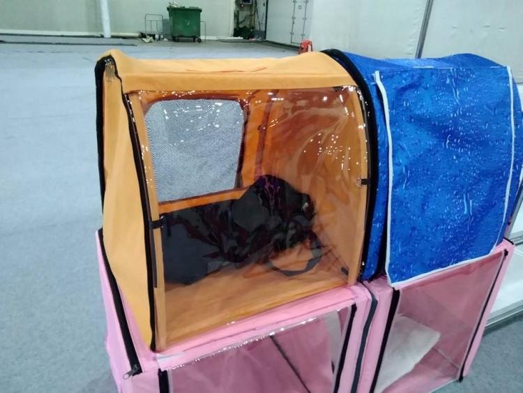 Выставочная палатка для кошки. Делаем своими руками - Сфинкс